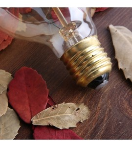 EDISON žiarovka BUDDING